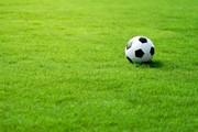 Искусственный газон для спорта